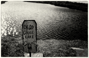 dead goose lake