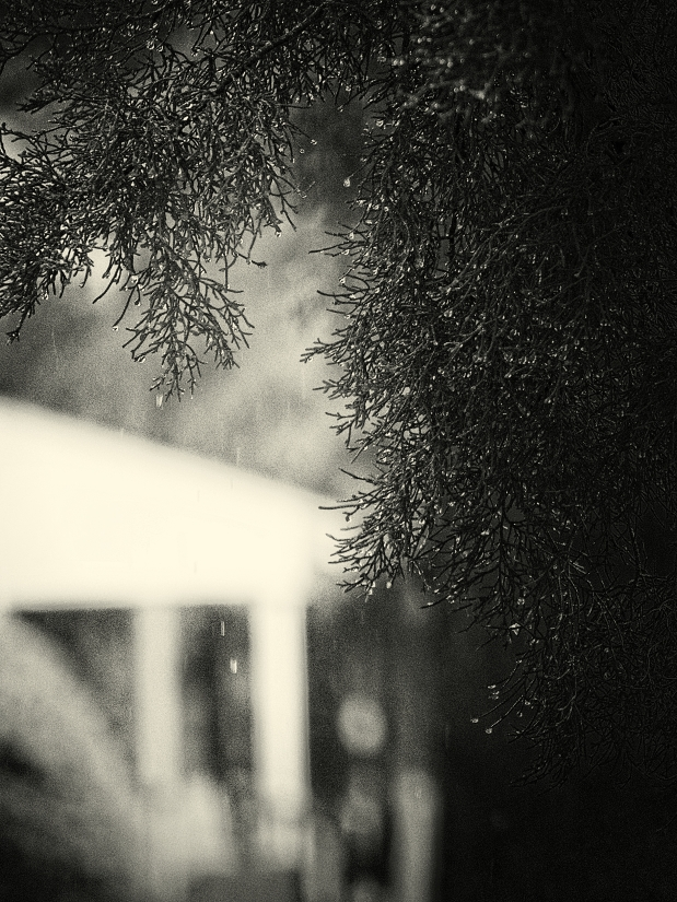 raindrops (2)