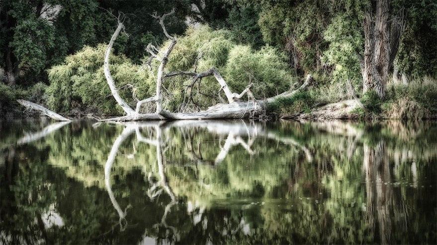 riverbend-ponds