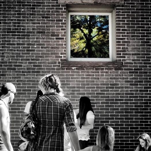 window6