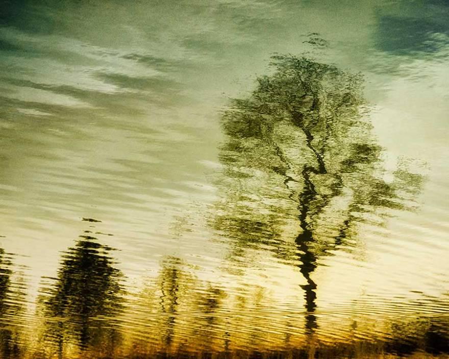 reflectionsweb