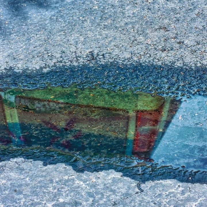 contemplationcolor5web