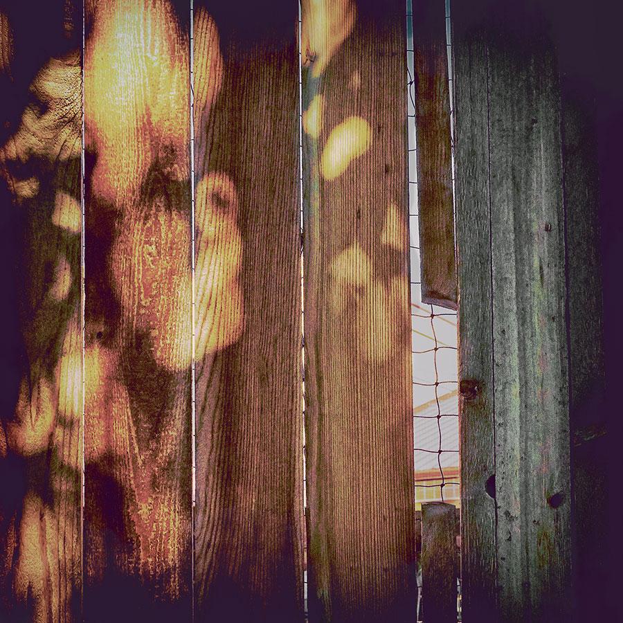 contemplative-photographyweb91718