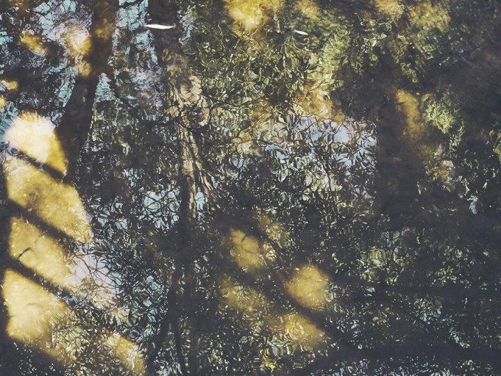 contemplativephoto-reflection