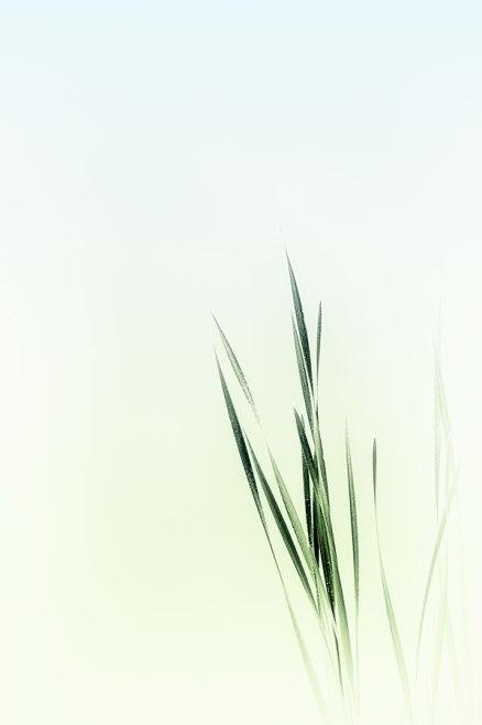 contemplative-photography-11b