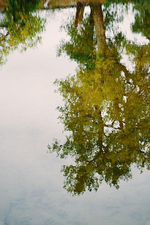 reflectionsweb102918